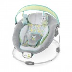 Bright Starts Soothe 'n Delight Bouncer - BB